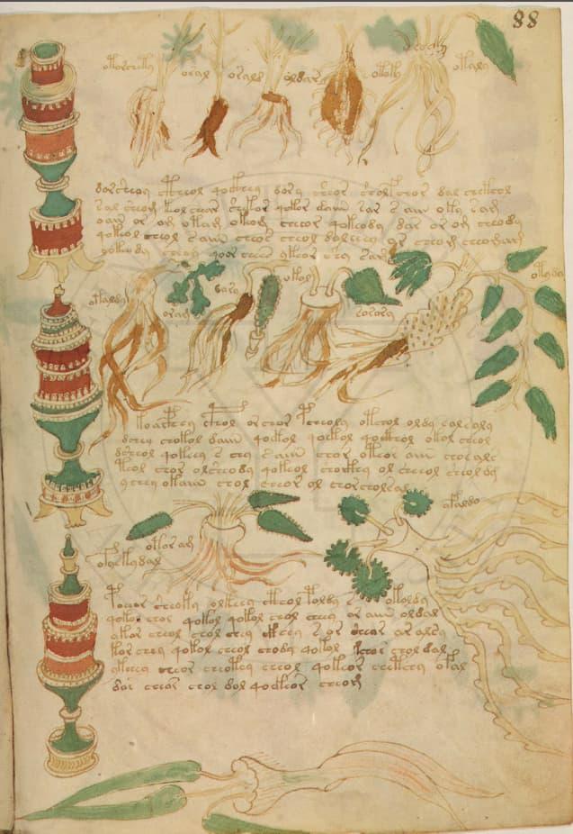 Image 1 (1)